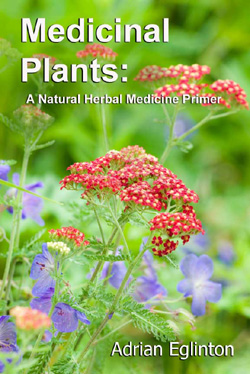 Medicinal Plants: A Natural Herbal Medicine Primer